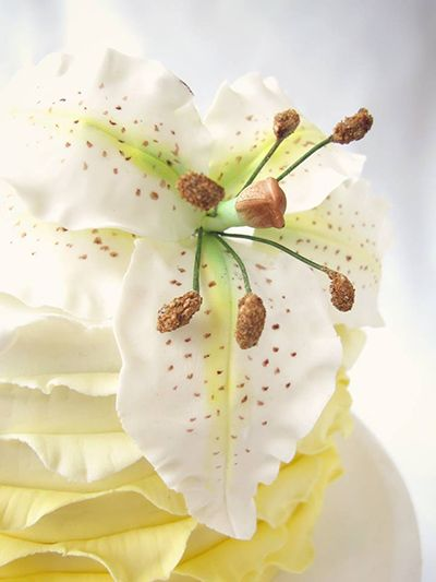 Curso de modelado de flores